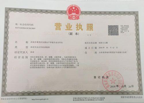 竞技宝官网网址-竞技宝测速站网址-竞技宝官方网址